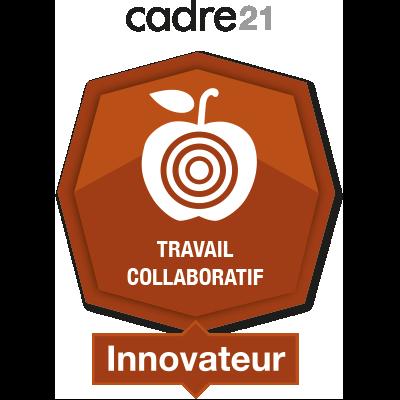 Travail collaboratif 4 - Innovateur