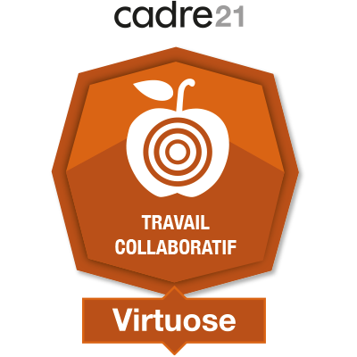 Travail collaboratif 3 - Virtuose